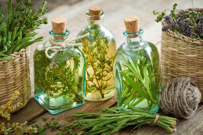 Flessen tijm en rozemarijn etherische olie of infusie, kruidengeneeskunde.