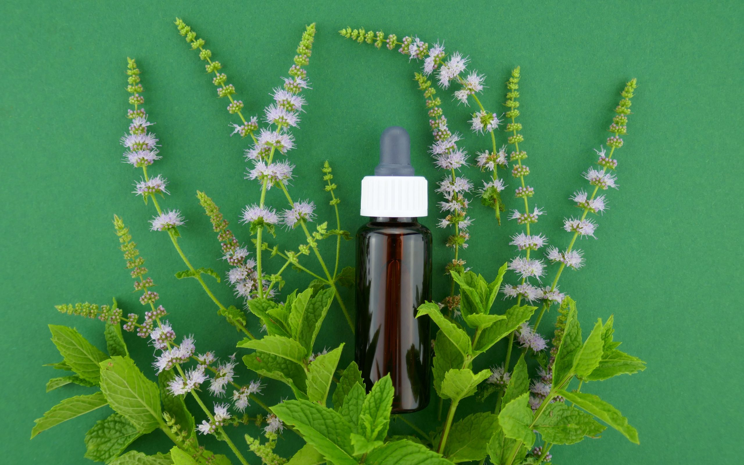 Combat Headaches With Peppermint Essential Oil - Nutroo